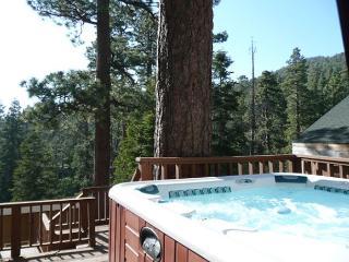 DISCOUNTED! TREE VIEWS! FAWNSKIN LODGE - WALK TO LAKE!  Hot Tub! - Big Bear Lake vacation rentals