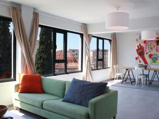 2 apts. 1 location. Roof top.Great views. Sleep 8. - Athens vacation rentals