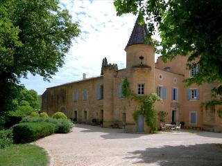 Le Chateau de Peintre, Spectacular Chateau in Provence, outside Uzès with own Private Lake, and Pool - Uzes vacation rentals