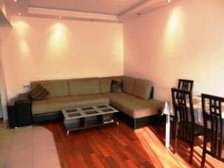 Modern Apt. in the Center - Yerevan vacation rentals