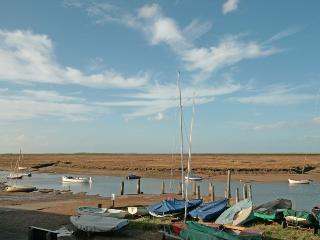 Bright 2 bedroom Cottage in Burnham Overy Staithe - Burnham Overy Staithe vacation rentals