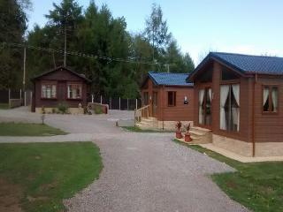 2 bedroom Lodge with Internet Access in Coleford - Coleford vacation rentals