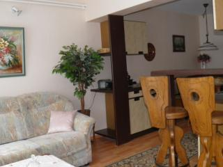 Nice Condo with Internet Access and Short Breaks Allowed - Bad Sooden-Allendorf vacation rentals