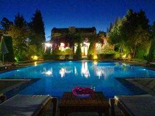 Leleg Villa - Gurece vacation rentals