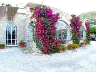 Ischia: Appartamenti con piscina e 4 posti letto - Sant'Angelo vacation rentals
