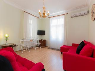 Historical big flat - Istanbul Province vacation rentals