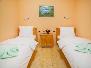 Hotel & Resort Gacka- Twin Room 2 - Mojkovac vacation rentals