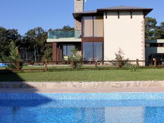 Villa Lilly with Sea view - Osenovo vacation rentals