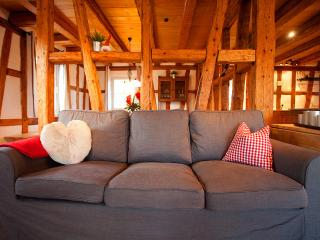 Perfect House with Internet Access and Dishwasher - Seewald vacation rentals