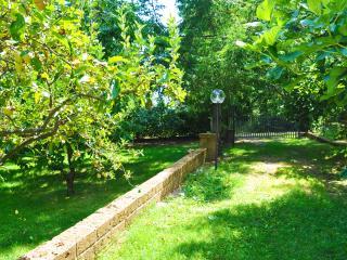 Appartamento in villa nel parco 2 - Canepina vacation rentals