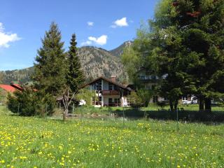 Comfortable Condo with Internet Access and Television - Bad Hindelang vacation rentals