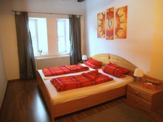 Comfortable Condo with Internet Access and Garden - Bad Hindelang vacation rentals