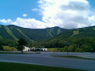 1 bedroom Condo with Internet Access in Killington - Killington vacation rentals