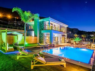 Luxurious villa with private pool in Crete - Hersonissos vacation rentals