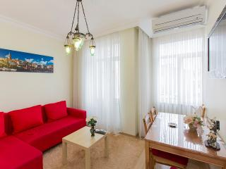 historical&comfy flat@city center - Istanbul vacation rentals