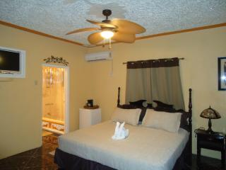 See, Hear,Smell,Taste and Touch Jamaica - Falmouth vacation rentals