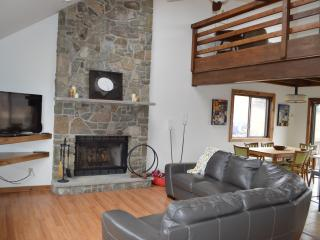 Winter in mountains, Renovated, Games, Pool Table - Lake Ariel vacation rentals
