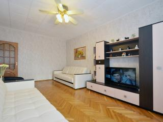 №33 Apartments in Moscow - Moscow vacation rentals