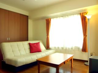 Spacious Nishi-Ogikubo 2BR Type-A 2F - Suginami vacation rentals
