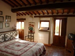 DELICIOUS BEDROOMS IN FARMHOUSE IN TUSCANY - Radicofani vacation rentals
