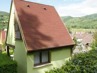 1 bedroom Gite with Internet Access in Kaysersberg - Kaysersberg vacation rentals