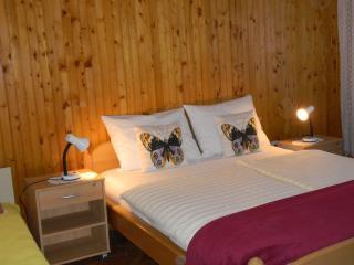 Villa Aloe EG - Bibinje vacation rentals