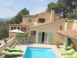 JdV Holidays Villa Violette, 5 bedrooms  in tranquil location, great price! - Castagniers vacation rentals