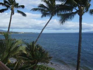 KIHEI BEACH, #309 - Kihei vacation rentals