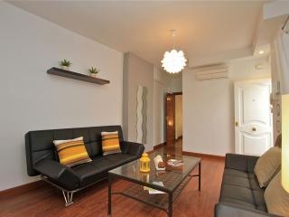 1 bedroom Apartment with Internet Access in Granada - Granada vacation rentals