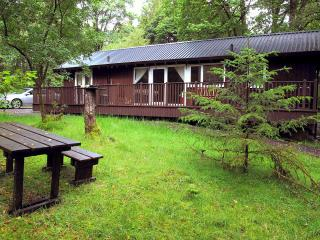 Liever Log Cabin - Dalavich vacation rentals