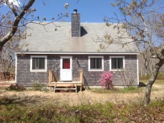 Nestled in the Woods - Edgartown vacation rentals