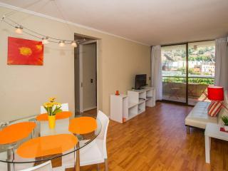 Bellavista:TVN/C13/Indisa/Sta Maria/Providencia - Santiago vacation rentals