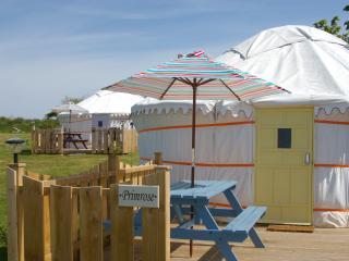 Primrose Yurt - Goonhavern vacation rentals