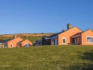 3 bedroom House with Balcony in Ventry - Ventry vacation rentals