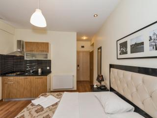 Luxury Apartment in City Center - Istanbul Province vacation rentals