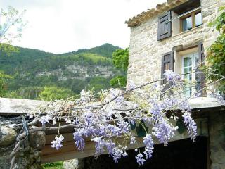 Nice Gite with Internet Access and A/C - Entrevaux vacation rentals