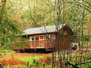 Nice Cabin with Deck and Porch - Dalavich vacation rentals