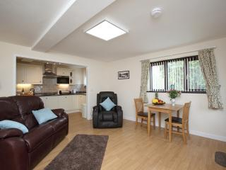 Vulcan Lodge - the Tudor Cottage - Llanwrthwl vacation rentals