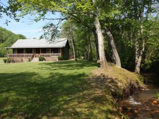 Beautiful Cabin with Internet Access and A/C - Cherokee vacation rentals