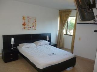 Nice Condo with Internet Access and Elevator Access - Medellin vacation rentals