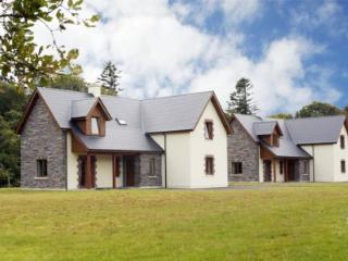 Ardnagashel Woods Holiday Homes - 4 Bed (Type A) : Ballylickey, Cork - Ballylickey vacation rentals