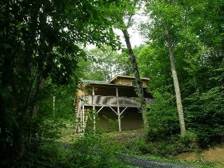 Charming Log Cabin close to Ski Beech - Beech Mountain vacation rentals