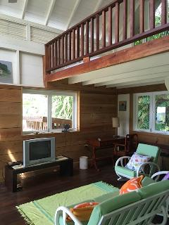 Perfect Villa with Deck and Internet Access - Charlotteville vacation rentals