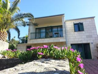 Family apt. with sea view in heart of Lumbarda - Lumbarda vacation rentals