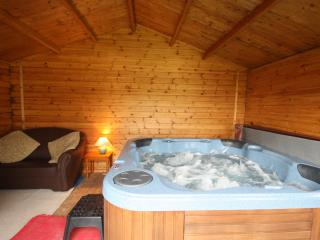 Maesyderi Cottage with Indoor Private Use Hot Tub - Llandysul vacation rentals