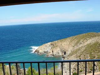 FACE MER SOLEIL LEVANT - LARGE VUE CRIQUE - Banyuls-sur-mer vacation rentals