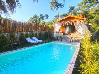 Villa Venus ( Honeymoon Villa ) - Islamlar vacation rentals
