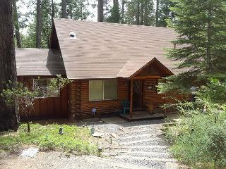 NEW LISTING!!  3 BR / 1.5 BA near Twain Harte; Sleeps 9-11 - Twain Harte vacation rentals