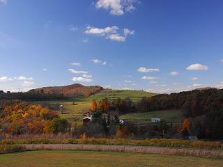 Astounding 4 Bedroom Mountain Retreat boasts extraordinary mountain views! - McHenry vacation rentals