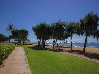 H107 is ****STEPS TO THE BEACH ***G/F bliss*** FAST WIFI *** - Kapaa vacation rentals
